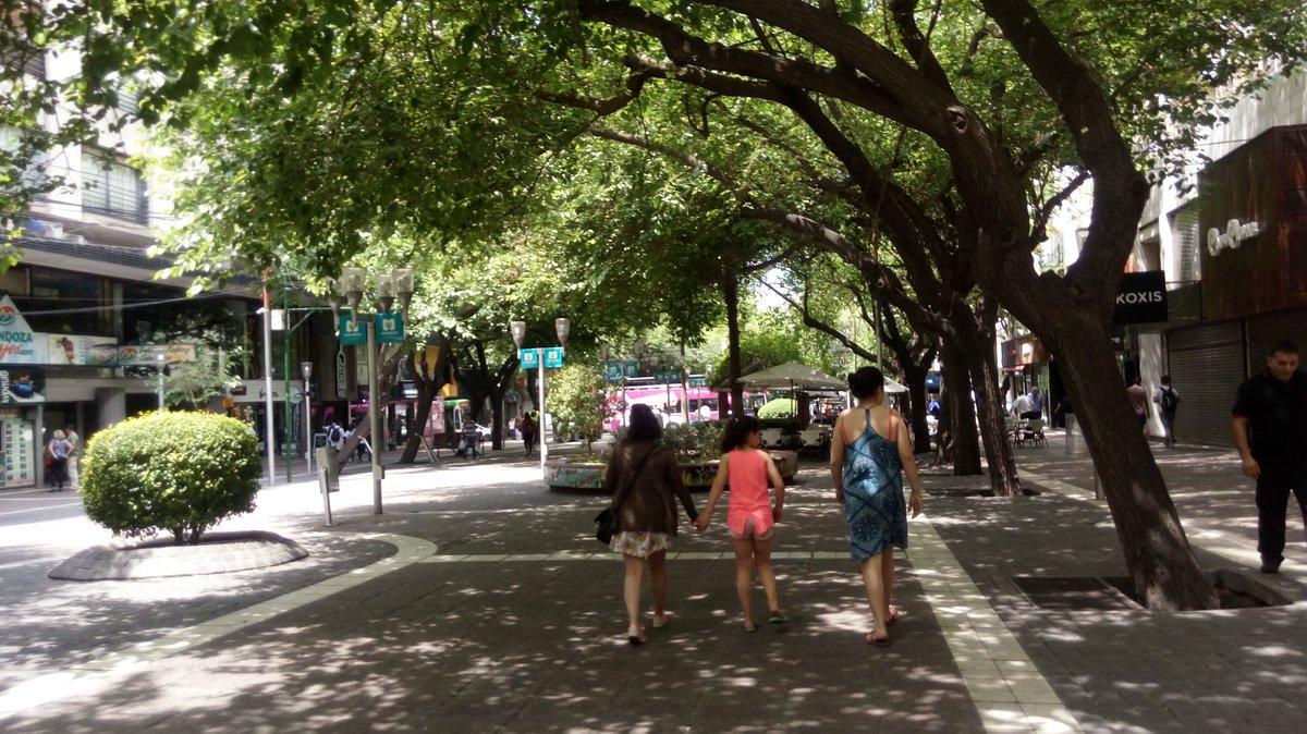 Resultado de imagen para Los árboles refrescan las calles y la ciudad