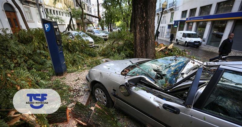 #Sociedade Os estragos da tempestade Ana https://t.co/KTv7KJ4R2x Em https://t.co/MDmhqgtnSp
