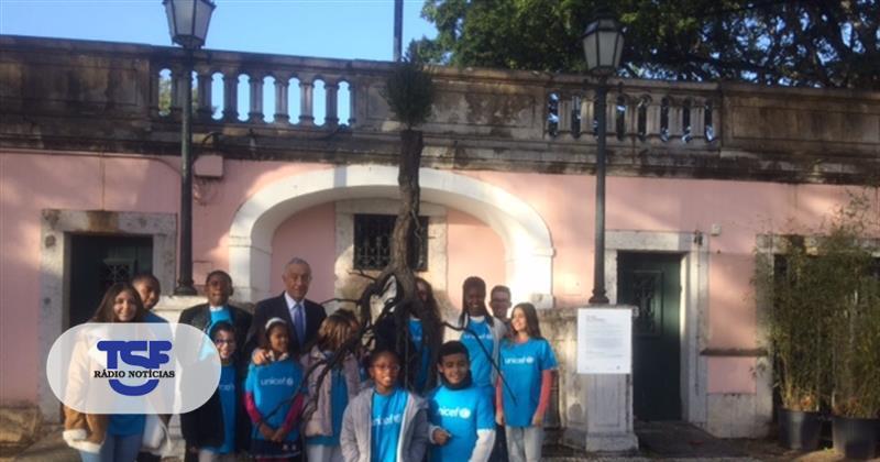 #Sociedade Belém recebe 'árvore da esperança' de Pedrógão Grande https://t.co/eqiFhz2ke2 Em https://t.co/MDmhqgtnSp