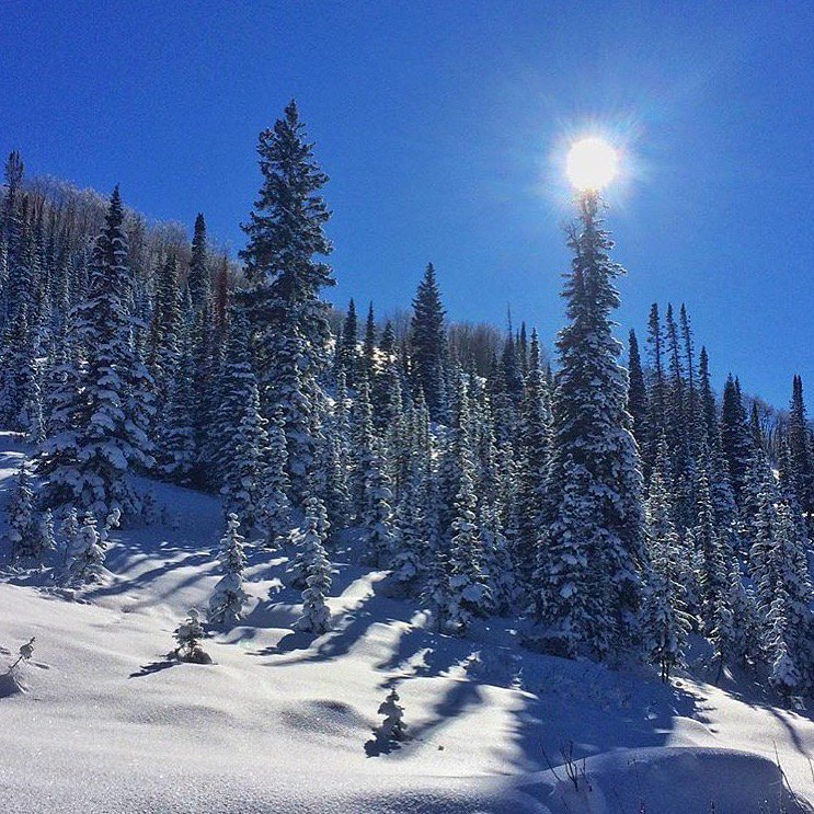 #MondayMotivation: Bluebird skies and surprise powder stashes. Here's what Billy, our Sales Analytics Manager, was up to this weekend. #gofarfeelgood #backcountry #coloRADo