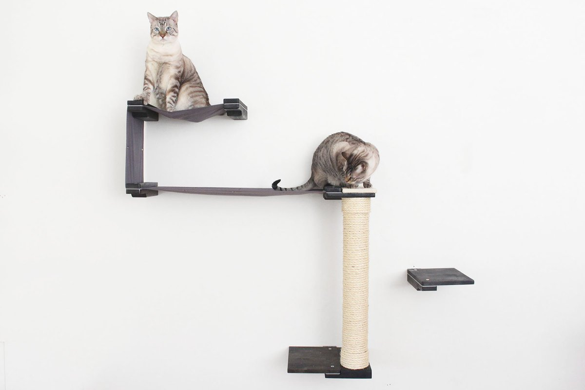 From Up High, Your Cat Can Survey The Room, Watching Out For Such Dangers  As Kids, Dogs, Or Vacuum Cleaners. ...