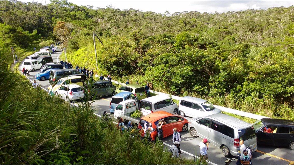沖縄防衛局が公表した有名な写真。この状態の道路に救急車が来た場合、数十秒で通過できるよう道が空けられますか?そもそも地域住民すら通れない状況だったんです。これが現実。