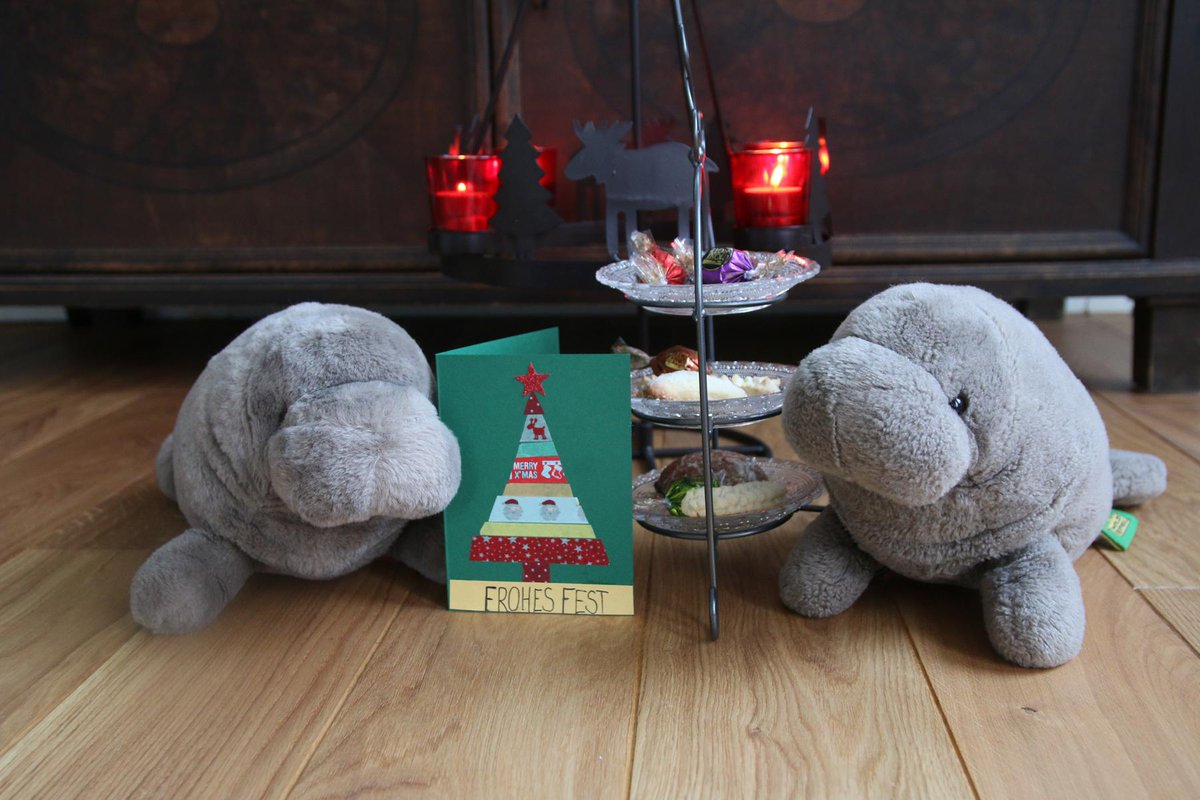 RT @happy__manatee: I wish you a merry #Christmas and peaceful holidays :3 https://t.co/KIpx6FR8Ow