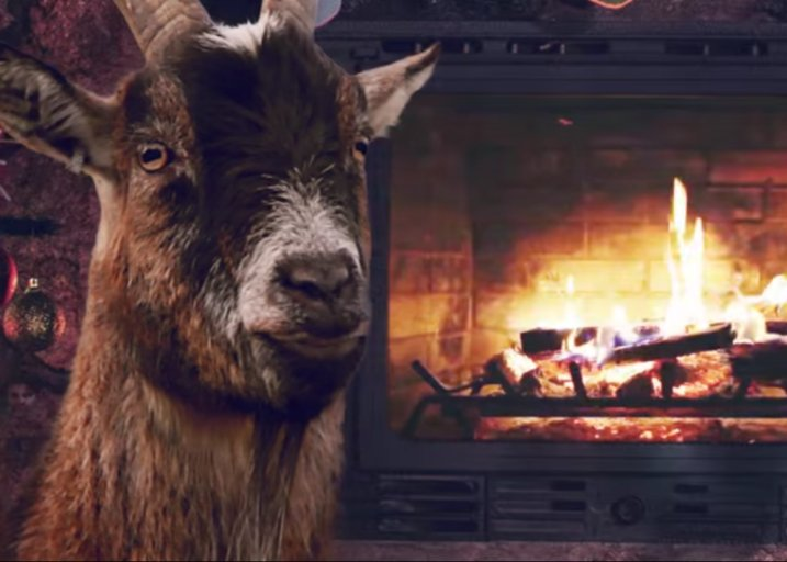 Finally, you can hear all your holiday favorites performed by goats: https://t.co/3o3BFbegai https://t.co/IHXwBYR24s