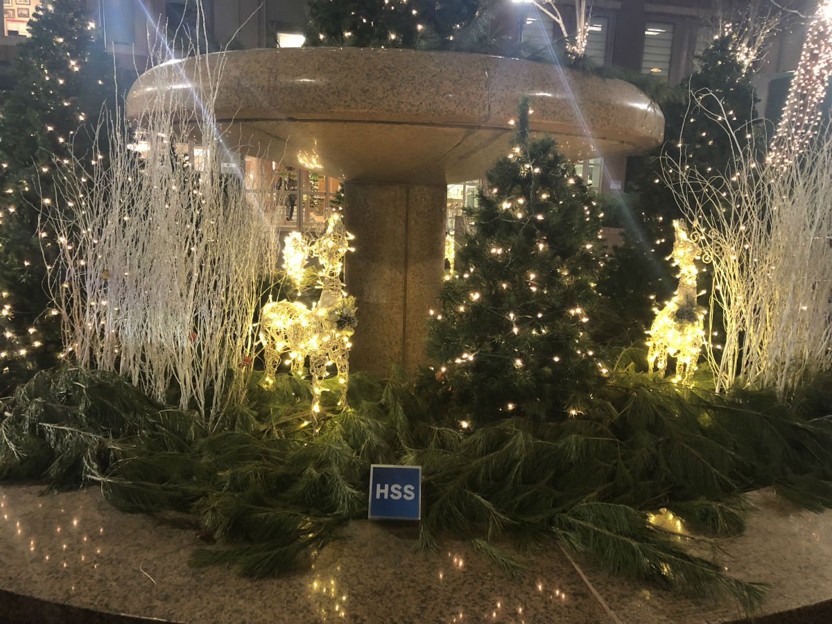 Hosp Special Surgery HSpecialSurgery Twitter - 16 amazing christmas decorations that make hospitals a better place to heal 4 is just brilliant