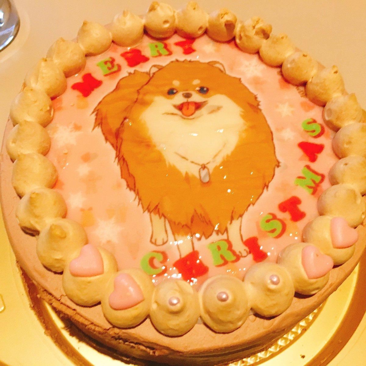 犬ケーキ1番良い部分もらった