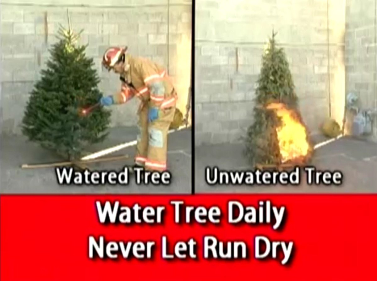 christmas tree stand is full of water the next two weeks is when most christmas tree fires occur dont let it happen to youpictwittercomly8esllrxl