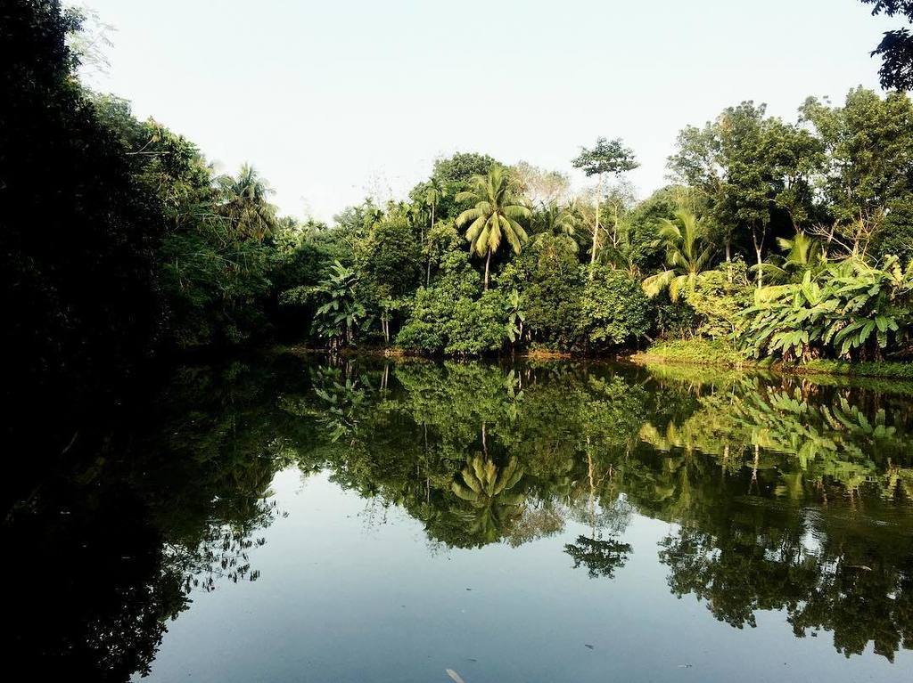 test Twitter Media - Perfect reflection!  This is a large pond, in Bangladesh we call it 'Dighi'. This is in Nowapara, very developed urban town, in between Khulna and Jessore! #Nowapara #Jessore #Khulna #Bangladesh #Pond #dighi #Lake #Water #reflection #Urban #urbanphotogra… https://t.co/PlOnYHFX4d https://t.co/OJDfoQUuMk
