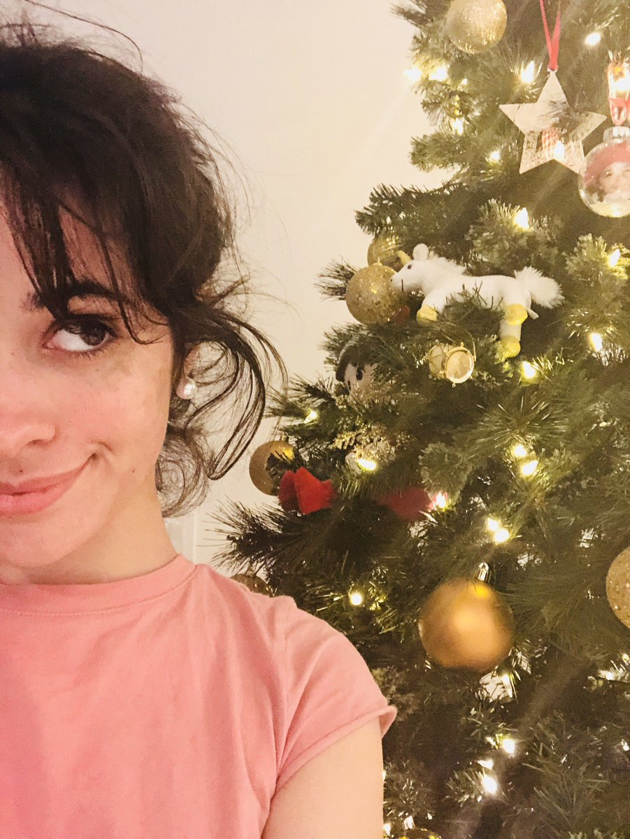 Camila On Twitter Guys I Dont Want Anything For Christmas Just
