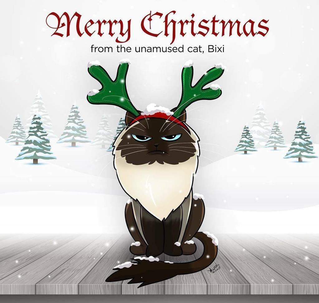 Constance Harvey On Twitter Merry Christmas Art Cat