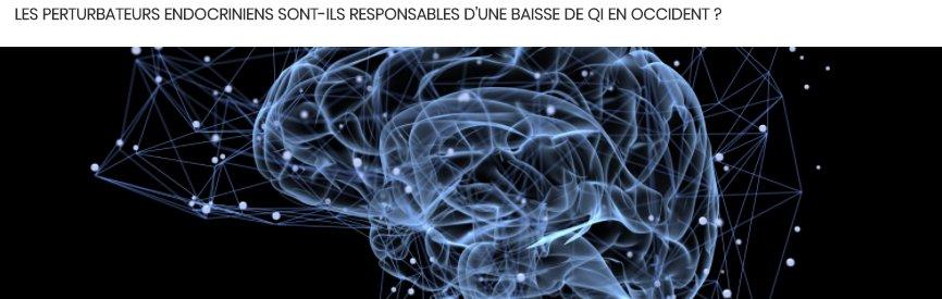 L'effet des #perturbateurs #endocriniens sur le #QI a fait couler beaucoup d'encre ces derniers temps. Petite synthèse de ce qui s'est dit dans la presse généraliste à ce sujet:  http://www. perturbateurendocrinien.fr/decryptage-deb at/#lienBloc4  …  #perturbateursendocriniens #PE #science #santé #cerveau #environnement #chimie pic.twitter.com/smWvFaRlM1