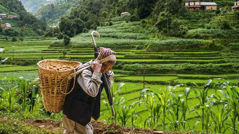 Resultado de imagen para Informe mundial sobre la protección social 2017-2019: La protección social universal para alcanzar los Objetivos de Desarrollo Sostenible