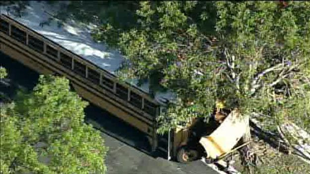 #DEVELOPING: School bus slams into tree in #Miramar. Children were on board. Here's what we know so far: https://t.co/jiCWgzEtNK #Florida