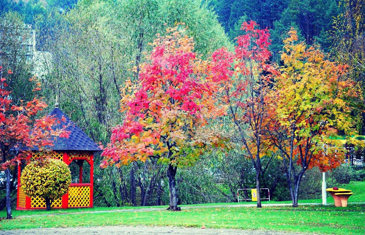 белокуриха алтайский край фото осень это прочный качественный