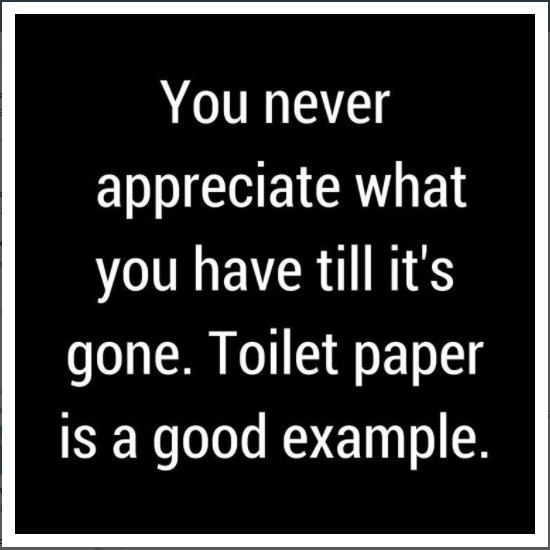 Image result for you never appreciate what you have until it's gone toilet paper