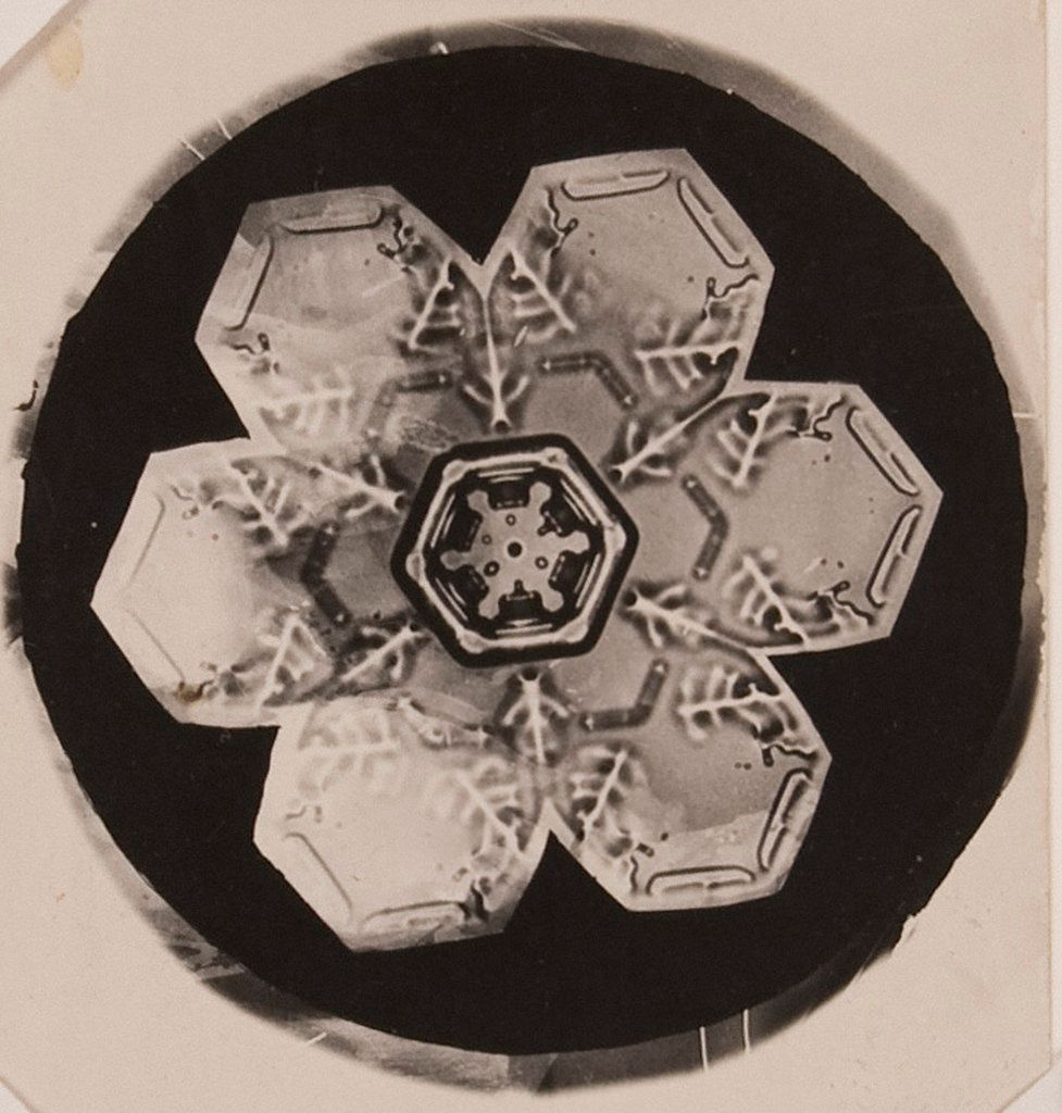 A look at the life and work of Wilson Bentley, a self-educated farmer from a small US town who, by combining a bellows camera with a microscope, managed to photograph the dizzyingly intricate and diverse structures of the snow crystal: https://t.co/GmTEW0X58T