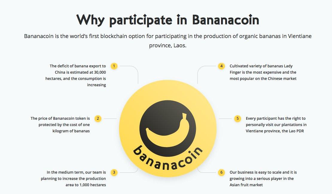 Risultati immagini per bananacoin