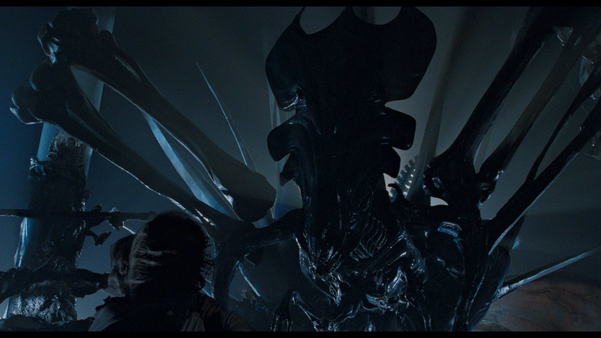 One of the greatest OH SHIT moments in #horror #scifi cinematic history . . . when the world saw THE BITCH for the very first time. #ALIENS #Xenomorph <br>http://pic.twitter.com/cAsNhPfyms