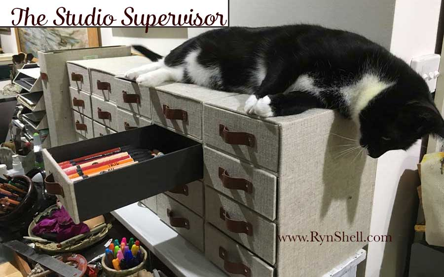 Meet Valentine, the Studio Supervisor. I&#39;ll strive to answer your Tweeted art related questions in a Tweet reply, or incorporate the answer into one of my 2018 art demonstration videos. I don&#39;t use the message system—my tips are public. #cat #supervisor #studio<br>http://pic.twitter.com/goxlDSu32m