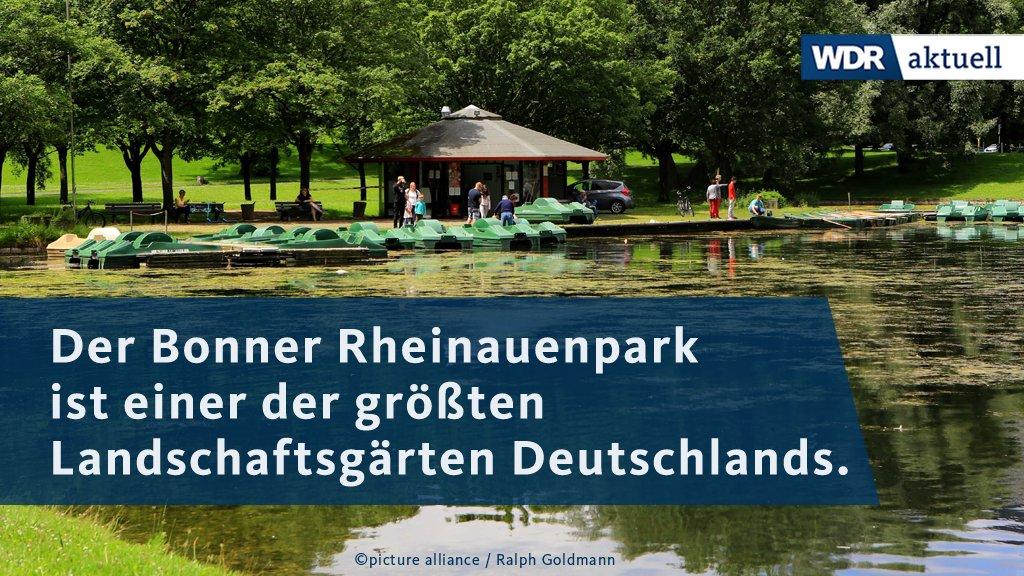 """Der Rheinauenpark in Bonn wird unter Denkmalschutz gestellt. Großveranstaltungen wie """"Rhein in Flammen' sollen aber weiter möglich sein."""