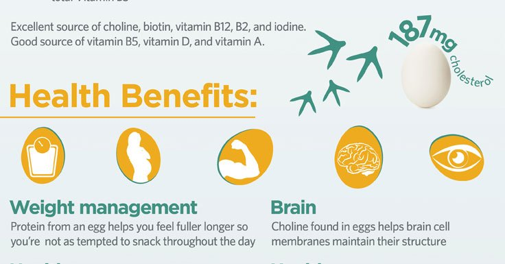 RT Eggs are one of the best foods to help boost mental focus ➡ https://t.co/UltNooDex1 https://t.co/kw4eJO42Hp #health #wellness