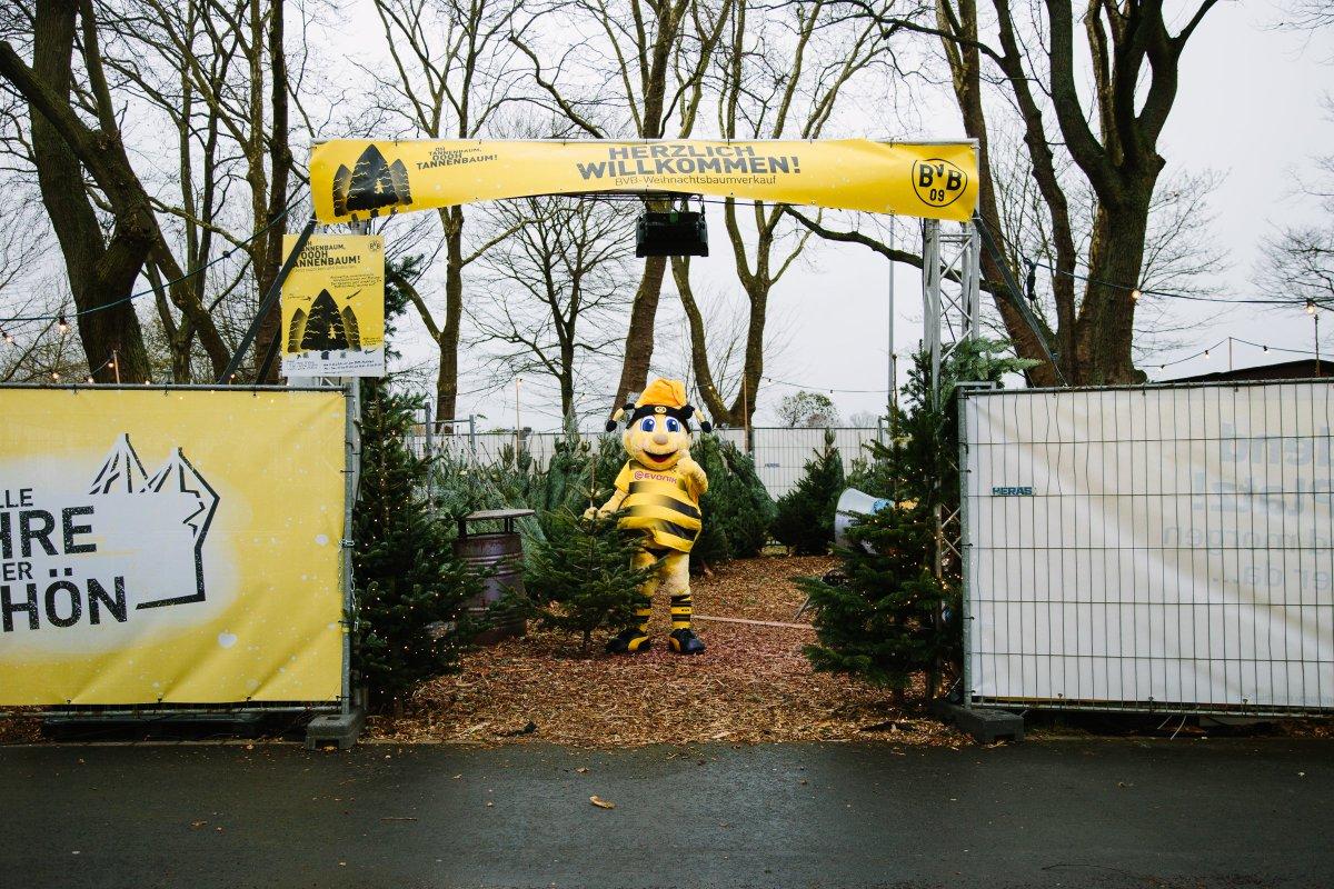 Bvb Weihnachtsbaum.Borussia Dortmund On Twitter Falls Ihr Den Rückweg Aus Dem