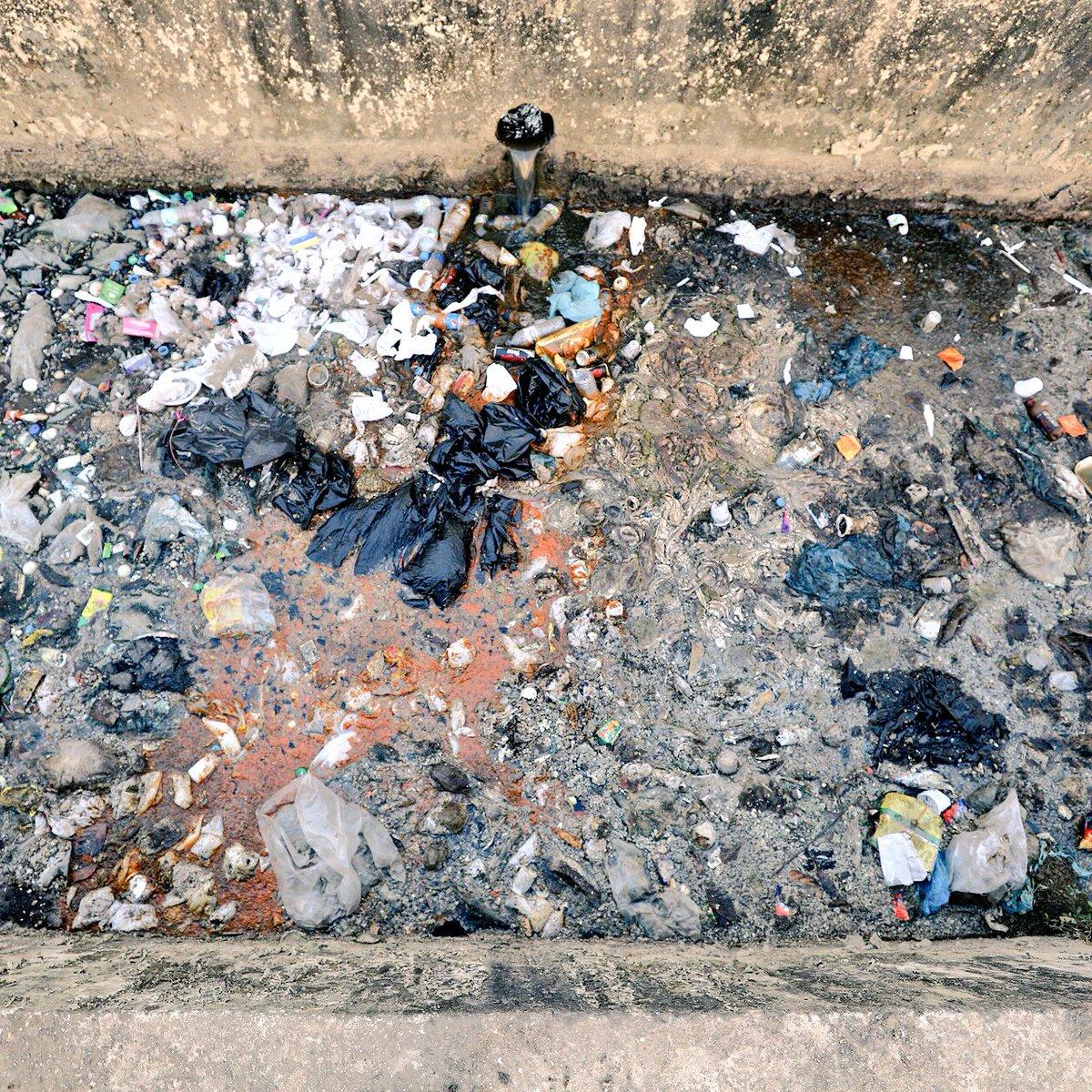 J'ai retrouvé ces photos, c'est la rivière au Bangladesh, en partie polluée par les usines de textiles et pleins d'autres choses. 🏭  Les rats agonisent et une fine couche de matière s'est créé à la surface de l'eau, voilà.