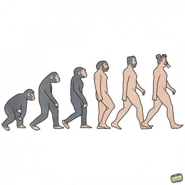 Картинка прикол эволюция человека