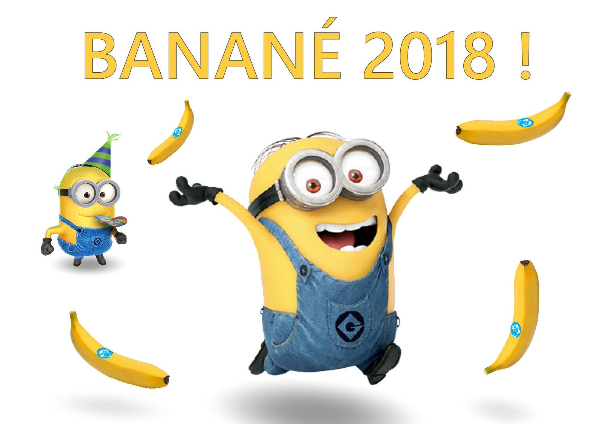 Monkeypatch on twitter banan tous les monkeys vous souhaitent une bonne ann e que cette - Les minions bonne annee ...
