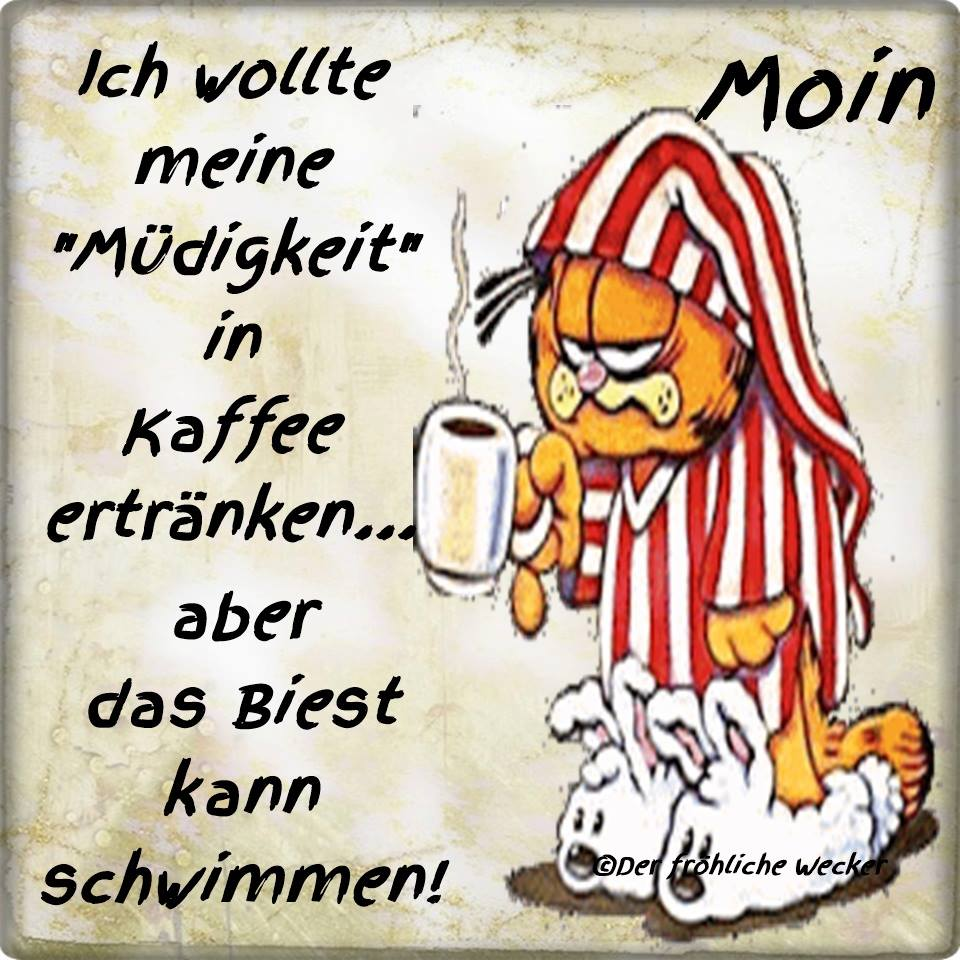 Guten Moin German Word Of The Day Moin 2019 07 27