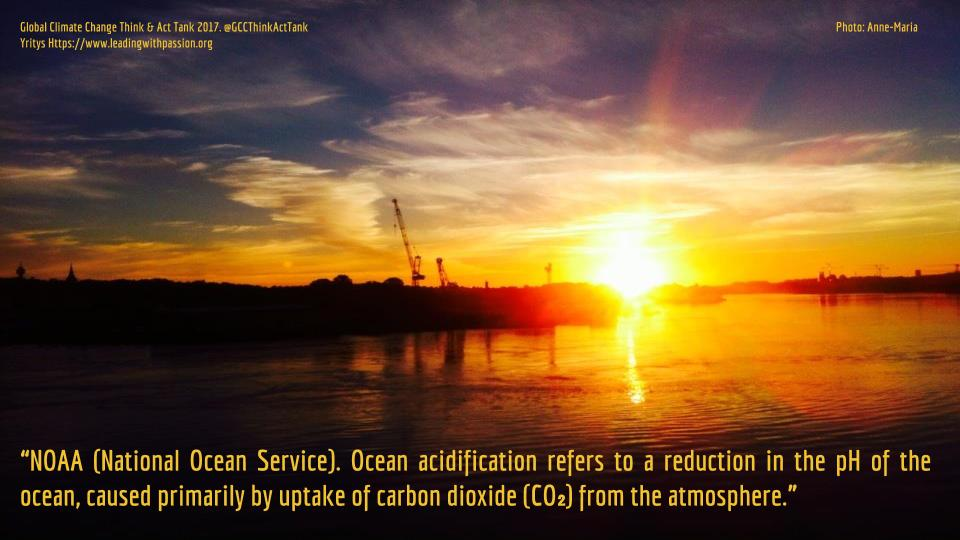 Why Are Our Oceans Becoming More Acidic?...