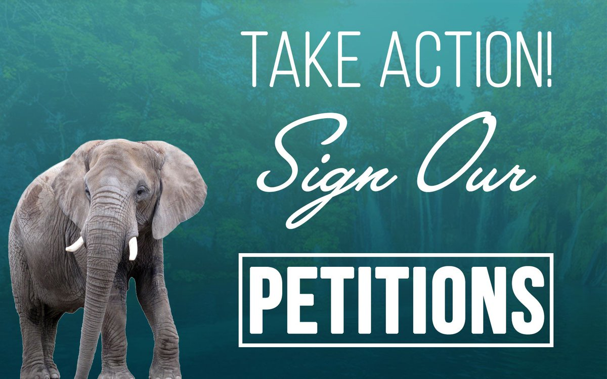 We're Changing the World and You Can Help –Sign Our Petitions! https://t.co/RmpxHfA75S #Petition #TakeAction #Resist