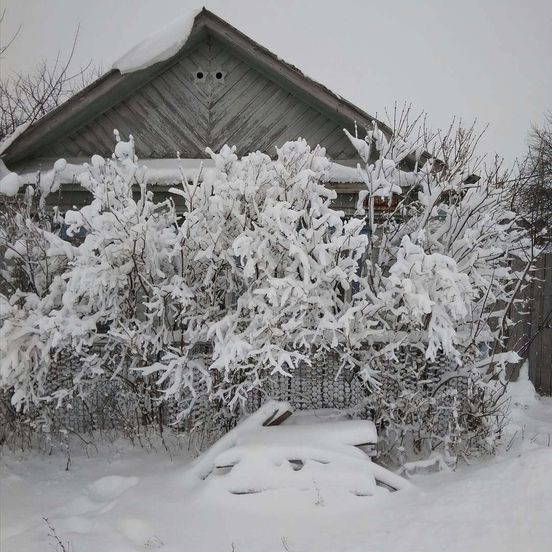 погода на декабрь в татарстане