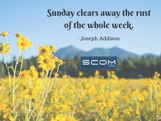 #SundayFunday #SundayMotivation #Quote https://t.co/cZpG0Cy0kv