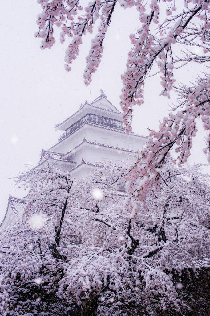 RT @amolalolo21: #Japanese #Castle ... https://t.co/CneQgWRBB1