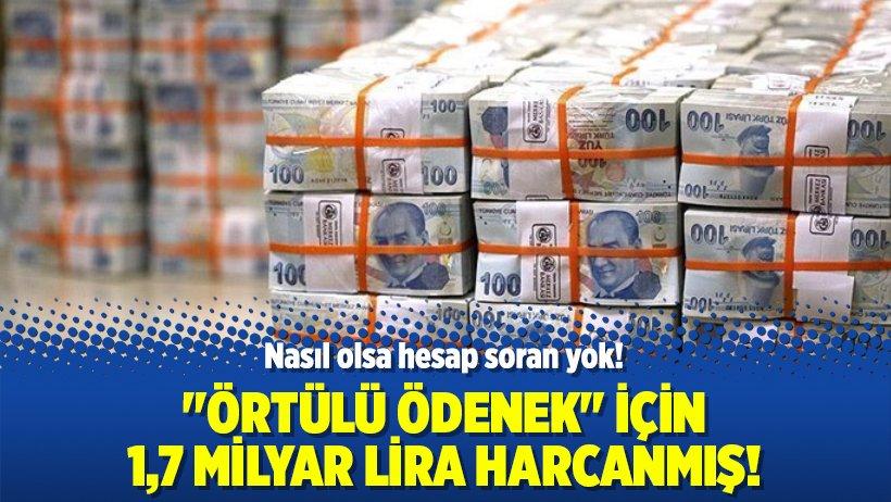 'Örtülü ödenek' için 1,7 milyar lira har...