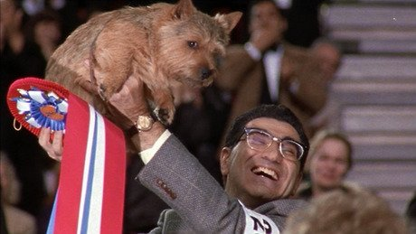 Happy birthday to a terrific actor and comedian, two-time Emmy winner Eugene Levy!