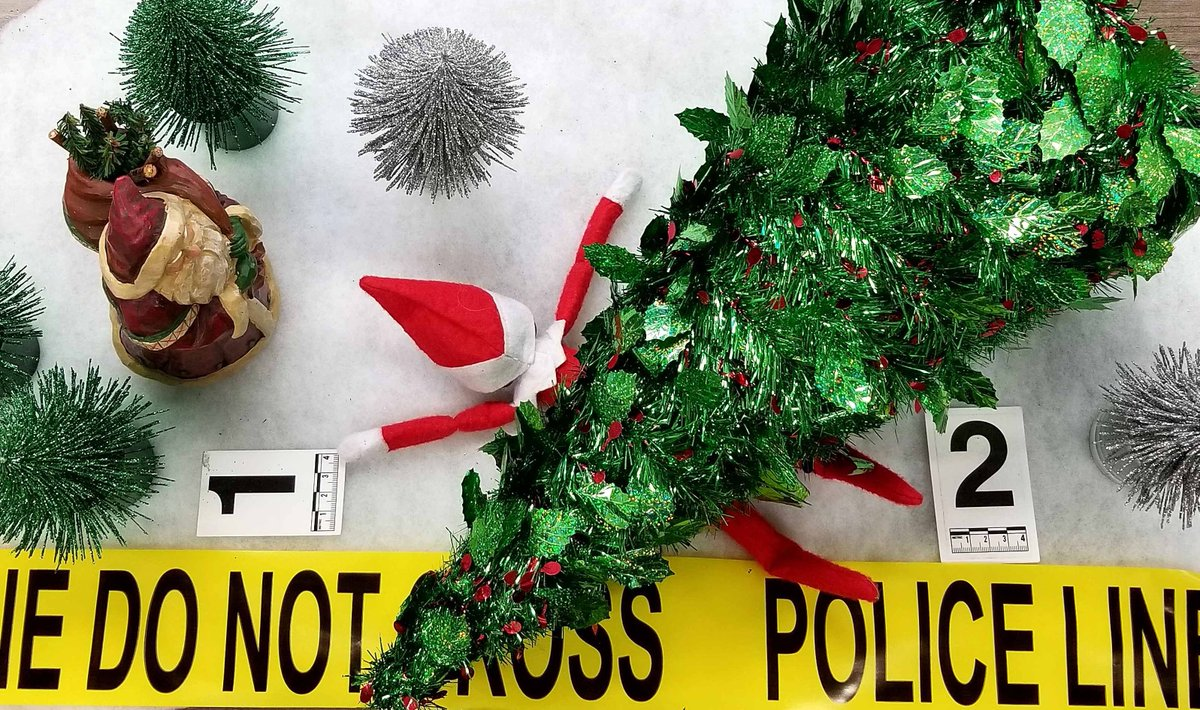 Christmas Tree Not Taking Water.Abbotsford Police Department On Twitter Last Weekend To