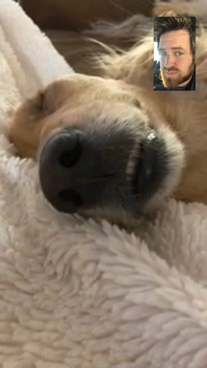 Awesome facetime with m&#39;lady and my baby boy this morning. Get to see them tomorrow :) #CutestFacetime #Remyboy #lookatthatnose #Home @jonnawalsh <br>http://pic.twitter.com/BiPXVUejsE