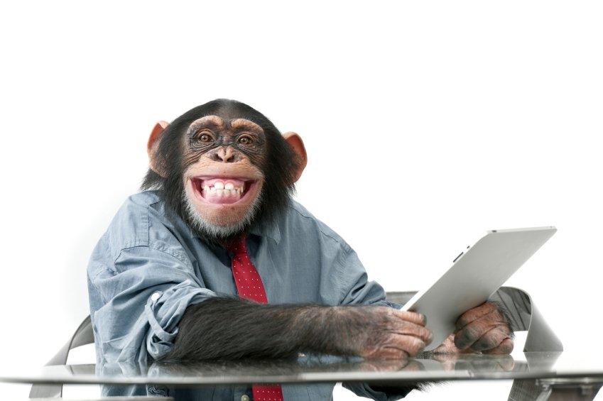 Плейскаты, человек и компьютер смешные картинки