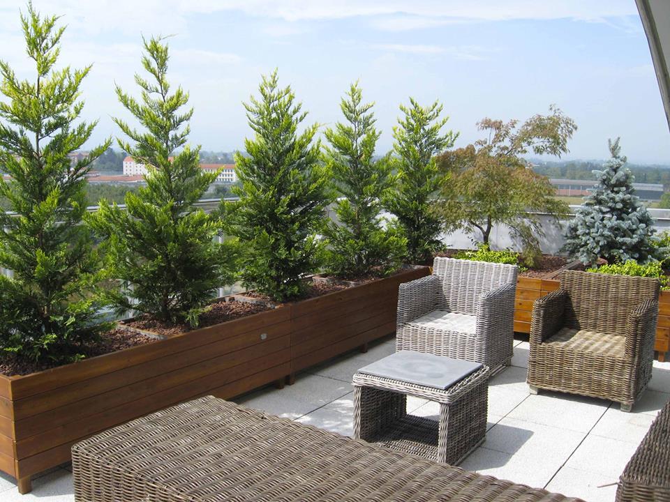 Elegant terrazzi hashtag on twitter with giardini sui terrazzi - Terrazzi e giardini pensili ...
