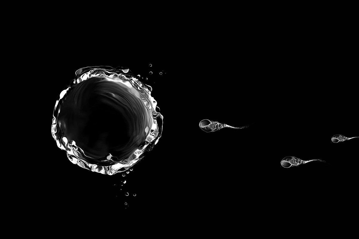 Hijacked sperm carry chemo drugs to cervical cancer cells https://t.co/4i9l8lrRmV