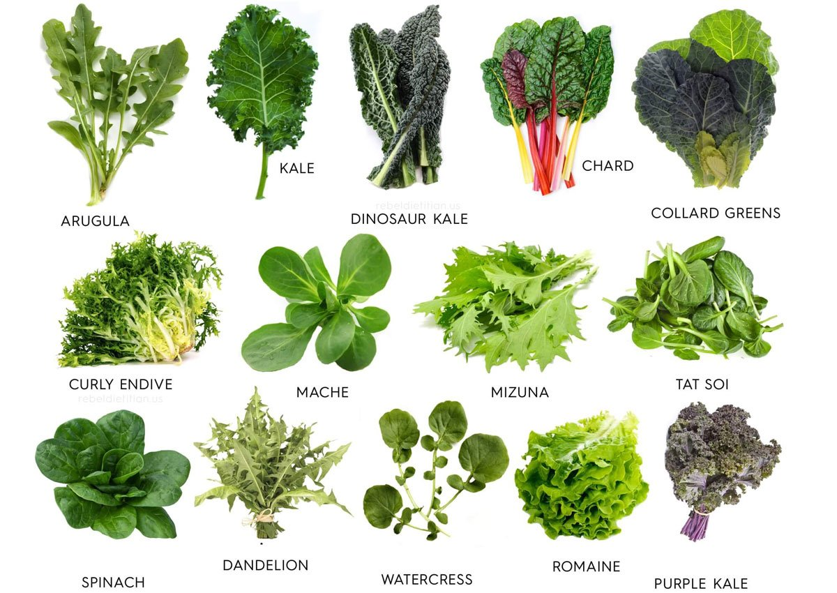 RT Leafy greens are one of the best breakfast foods to improve digestive #health ➡ https://t.co/J4JObu5g7r https://t.co/Xl8VGphrYQ  #wellness