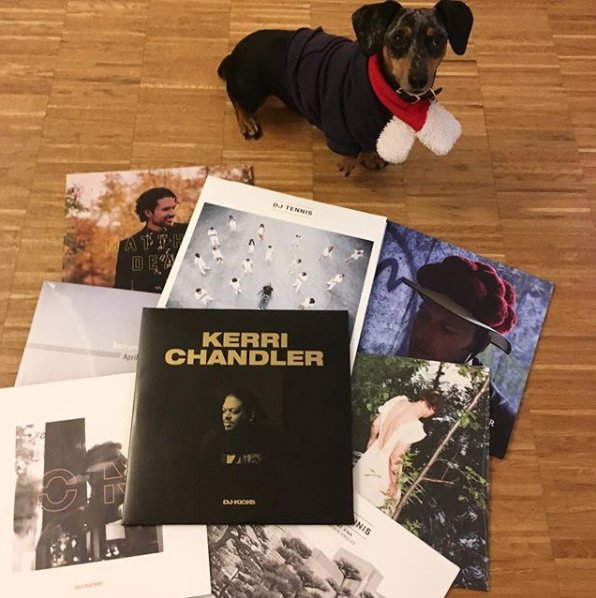 Happy Holidays from the !K7 canine Luna. Get 20% off these 2017 releases and more at our Bandcamp store. Code: holidays2017.  https:// k7records.bandcamp.com /    <br>http://pic.twitter.com/GwMYqxBpV6
