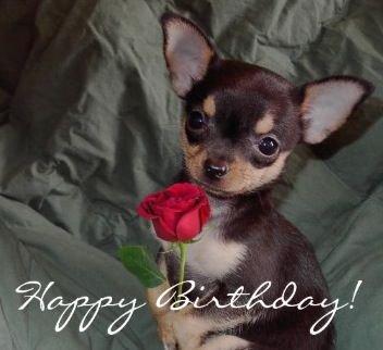 Happy birthday Alyssa!