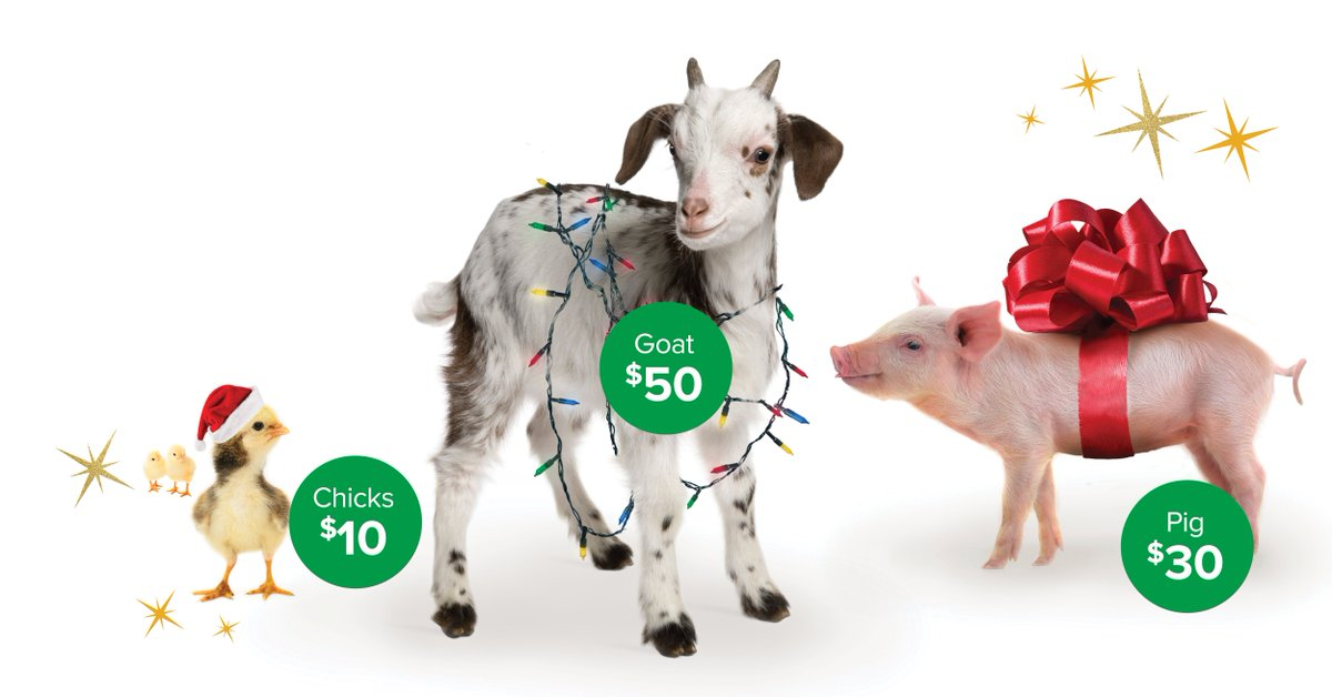 """ELCA World Hunger on Twitter: """"Give ELCA Good Gifts on Dec. 20 and your animal gifts will be matched – dollar for dollar – until we reach $25,000!… """""""