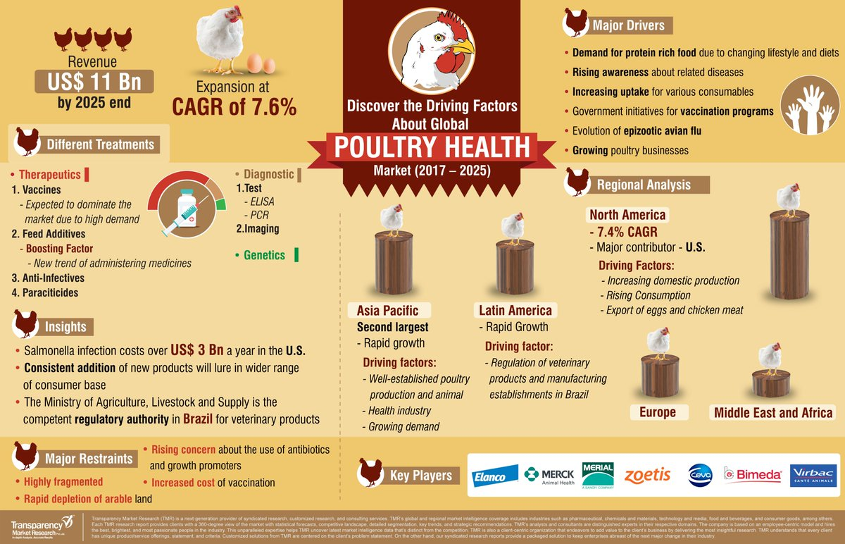 PoultryTips hashtag on Twitter