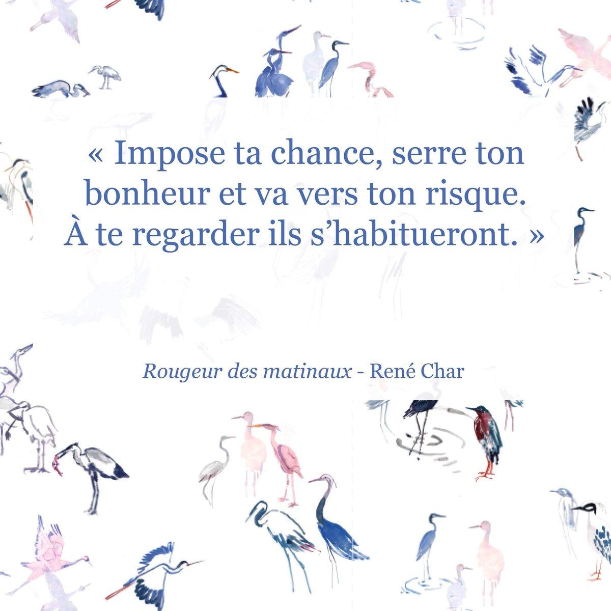 Bleu Tango Paris On Twitter Un Brin De Poésie Avec René