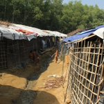 Image for the Tweet beginning: The Rohingya camp taught me