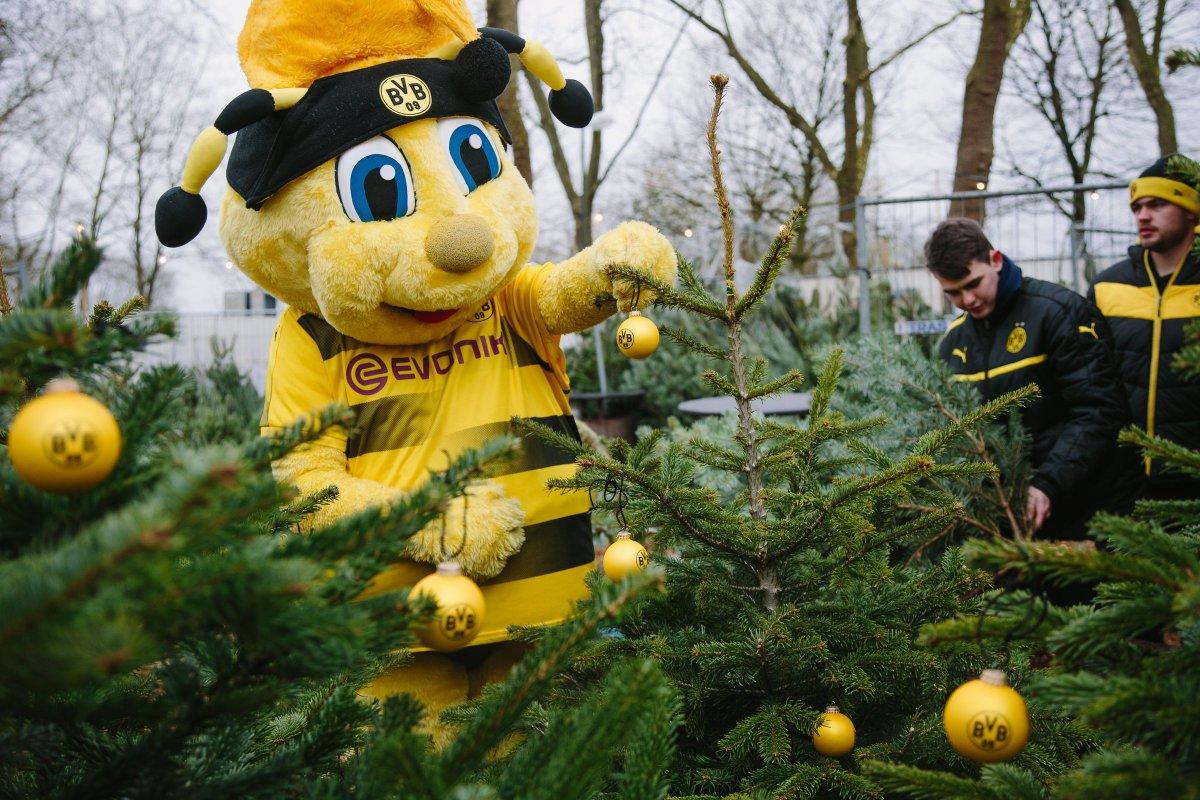 Bvb Weihnachtsbaum.Borussia Dortmund On Twitter Noch Bis 18 Uhr Könnt Ihr Heute An